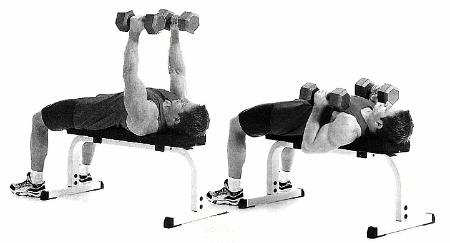 упражнения на грудные мышцы с гантелями