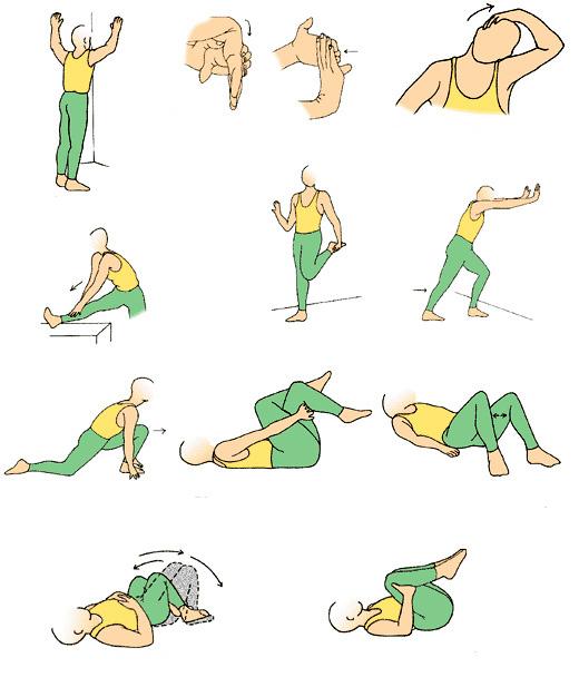 Комплекс упражнений для развития гибкости