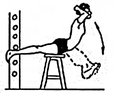 упражнения для мышц спины при сколиозе